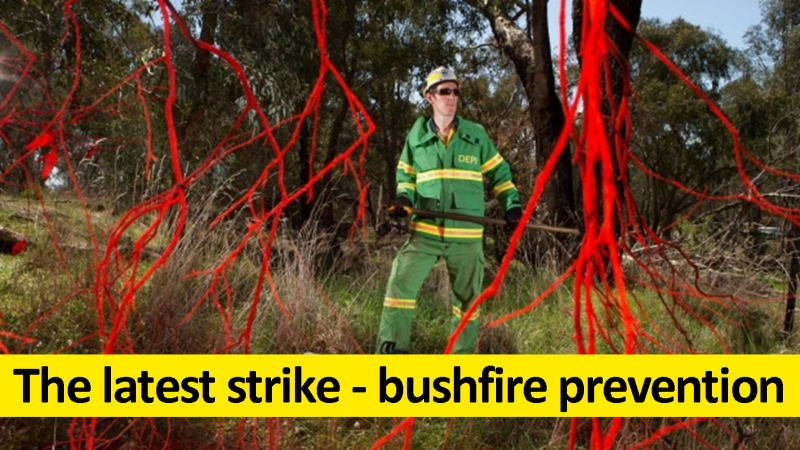 The latest strike - bushfire prevention
