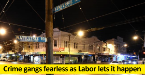 Crime gangs fearless as Labor lets it happen
