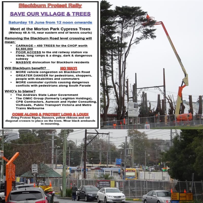 Save Blackburn village and trees