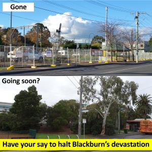 Have your say to halt Blackburn's devastation
