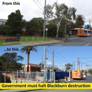 Government must halt devastation