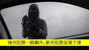 more-crimes-in-nsw-than-victoria-chinese-media
