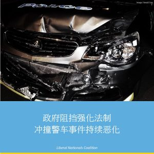 government-blocks-police-car-ramming-law-chinese-media