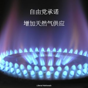 liberals-to-boost-gas-supplies-chinese-media
