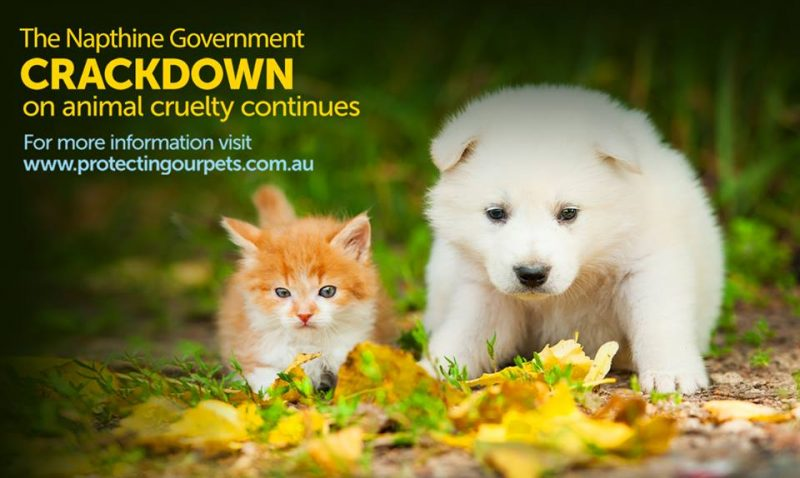 Napthine government crackdown on animal cruelty