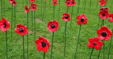 ANZAC poppies outside Box Hill Town Hall