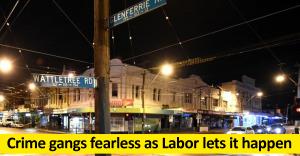 Crime gangs fearless as Labor lets it happen