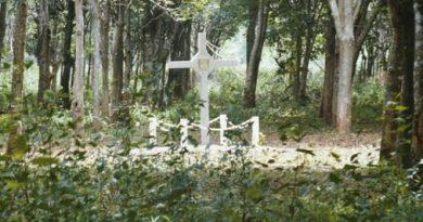 Long Tan Cross
